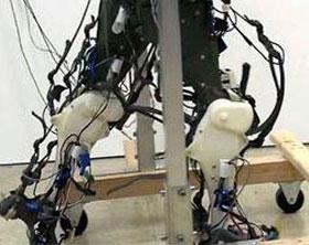 Chân robot di chuyển như chân người