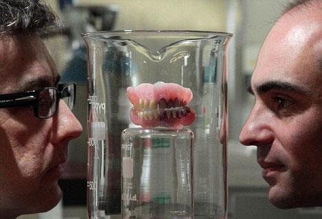 Vi khuẩn từ tảo biển - vũ khí mới ngừa sâu răng hiệu quả