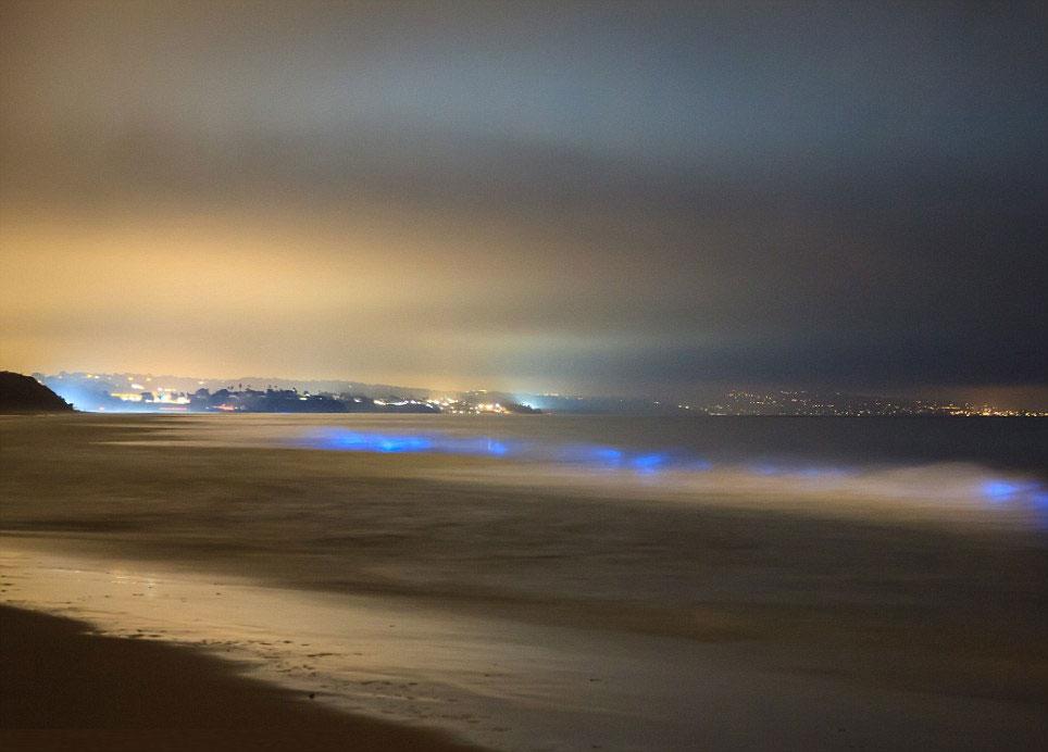Sóng biển xanh bí ẩn lúc nửa đêm ở California