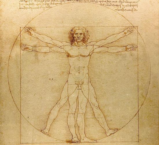 Người Vitruvian - bức vẽ nổi tiếng về mặt giải phẫu  học của Leonardo Da Vinci.