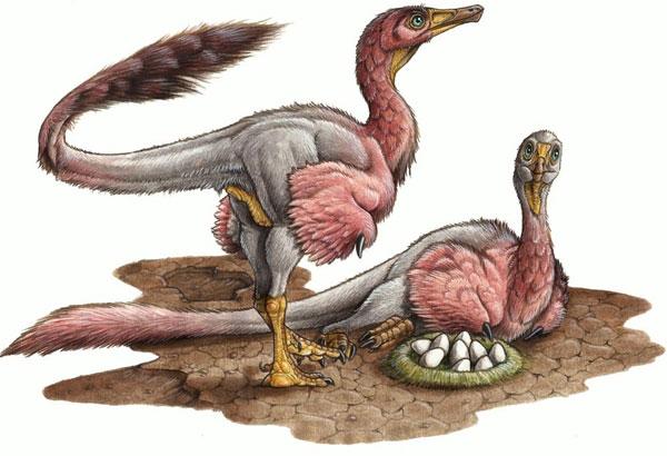 """Khủng long có """"bà con"""" với chim hiện đại"""
