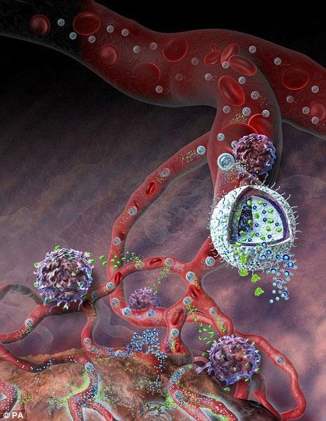 Các tinh cầu NLGs đủ nhỏ để theo máu phân phối đi khắp cơ thể, nhưng lại đủ lớn để kẹt lại trong các mạch máu của khối u ung thư và giải phóng ra thuốc kháng ung thư cực mạnh.