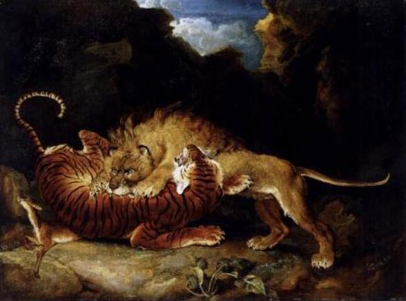 Dữ liệu ghi nhận hổ thường có lợi thế trong cuộc chiến với sư tử