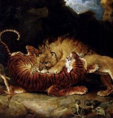 """Khi hổ """"chiến"""" sư tử, ai thắng?"""