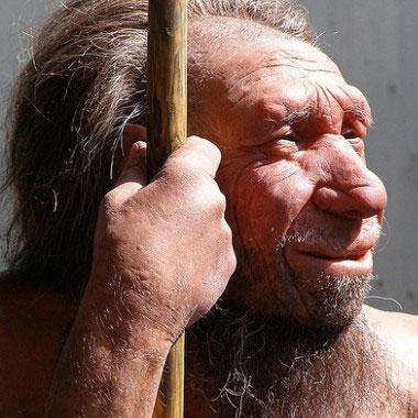 Vì sao tay phải người Neanderthal to gấp đôi tay trái?