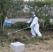 Mỹ - Nhật hợp tác giám sát phóng xạ