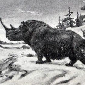 Nga phát hiện hóa thạch tê giác hàng ngàn năm tuổi