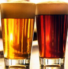 Bia sẽ rẻ và đậm đà hơn nhờ nấm men nhân tạo