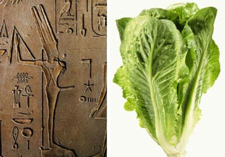 """Xà lách - """"thần dược"""" tình dục của người Ai Cập"""