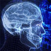 Chế tạo chip điện tử mô phỏng cách thức của não bộ