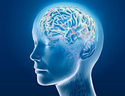 Các nhà khoa học đã có thể biết được một người dự định làm gì khi dùng máy cộng hưởng từ quét quá trình hoạt động của não bộ.