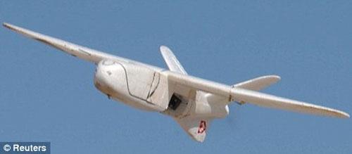 Các máy bay không người lái được sử dụng trong các sứ mệnh do thám và nem bom hiện nay có kích quá lớn. Ảnh: Reuters
