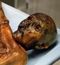 """""""Lời nguyền"""" kinh hoàng của xác chết"""