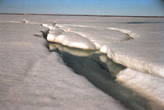 Bắc Cực thải 62 tỷ tấn carbon trong thế kỷ 21