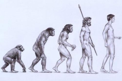 Sự thật về nguồn gốc của con người