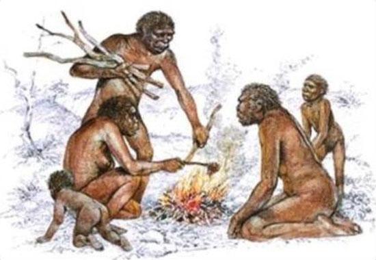 Nấu nướng - bước đột phá mãnh liệt của tiến hóa