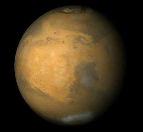 Muốn lên sao Hỏa, phải biết trồng trọt và nấu ăn