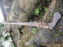 Phát hiện vũ khí hiếm của nghĩa quân Phan Đình Phùng