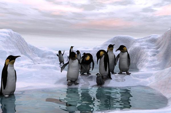 Nam Cực từng một thời ấm áp