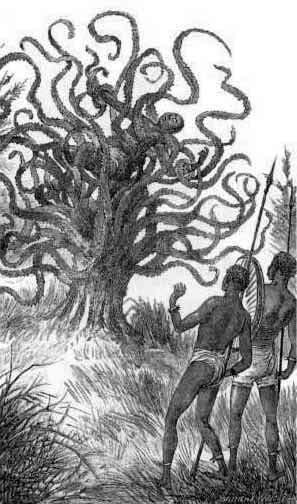 Tranh vẽ cây ăn thịt người của South Australian Register