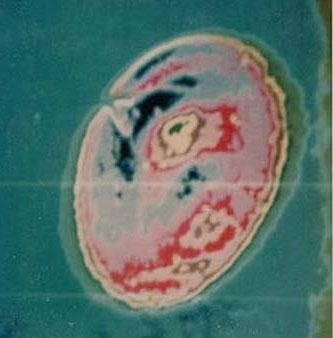 Australia công bố tài liệu mật về UFO
