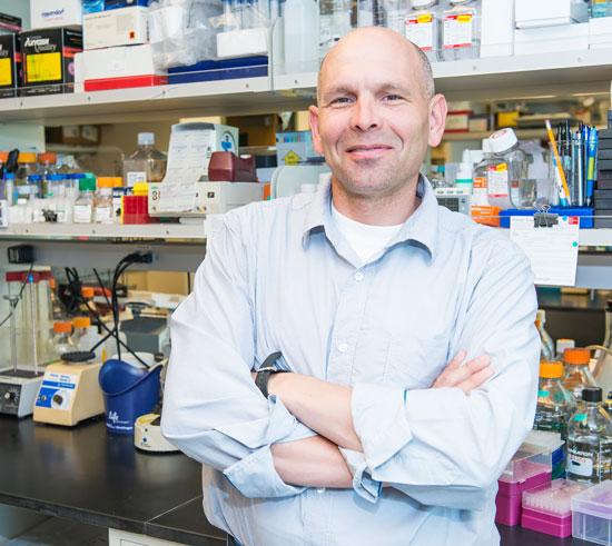 Hóa trị liệu làm tăng lây lan tế bào ung thư?