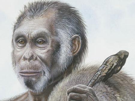 Hình minh họa người Homo floresiensis.