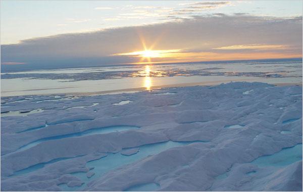 Băng ở Bắc Cực đang tan nhanh hơn dự đoán trước đây