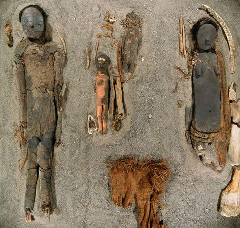 Các xác ướp người lớn và trẻ em được phân cách bởi xương cá voi