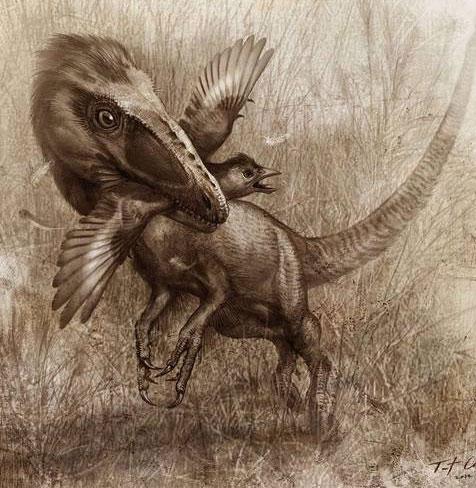 Kỳ lạ hóa thạch bên trong bụng khủng long