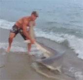 Video: Người và cá mập hỗn chiến trên bờ biển