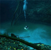 Vẻ đẹp huyền bí mê hoặc dưới đáy sông