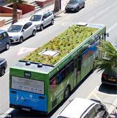 Vườn di động trên nóc xe buýt