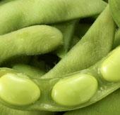 Hợp chất trong đậu nành giúp trị HIV