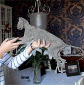 Phát hiện xác ướp mèo khi sửa nhà