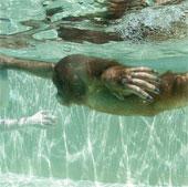Khỉ học bơi như người