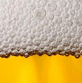 Sự thật chưa được khám phá về bia