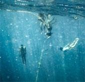 Cuộc sống của dân du mục biển Moken