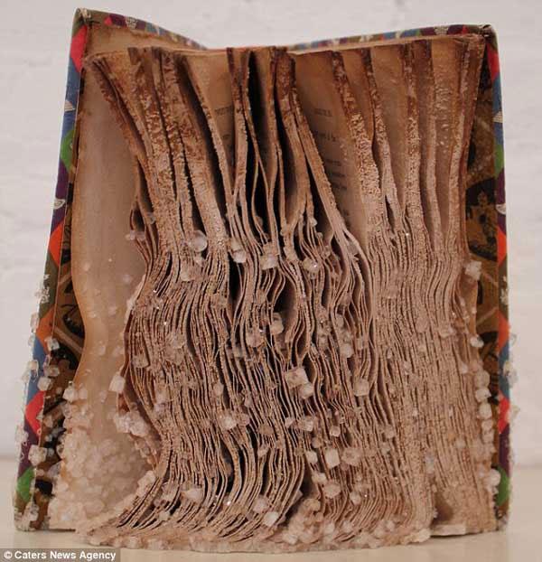Những cuốn sách pha lê độc nhất vô nhị