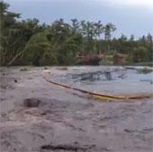 Video: Xem hố tử thần nuốt hàng chục cây rừng