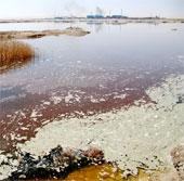 20 triệu người Trung Quốc có thể nhiễm độc thạch tín