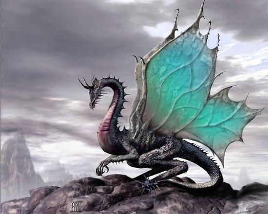 Hình ảnh miêu tả rồng châu Âu