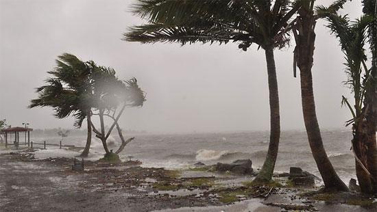 """Biến đổi khí hậu """"thách thức"""" khu vực Thái Bình Dương"""