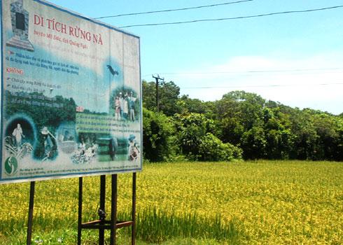 Rừng sinh thái hàng trăm năm tuổi giữa làng