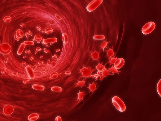 Phát hiện mới về gen liên quan bệnh ung thư máu