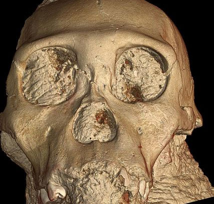 Phát hiện hộp sọ tổ tiên loài người cách 2 triệu năm