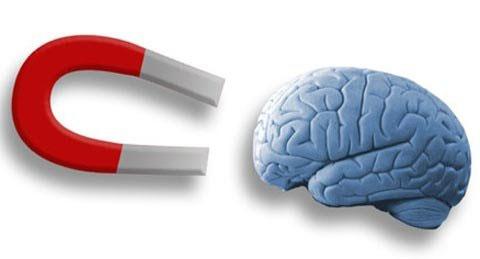 Dùng nam châm điều khiển não bộ