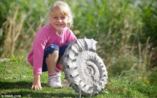 Bé gái 5 tuổi đào được vỏ ốc 160 triệu năm