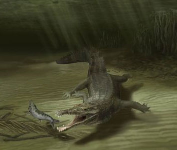 Phát hiện hóa thạch cá sấu khổng lồ dài 6 mét