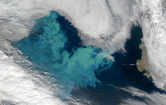 Một bức ảnh về Biển Barent do vệ tinh nhân tạo chụp vào ngày 10/9. (Ảnh: NASA)